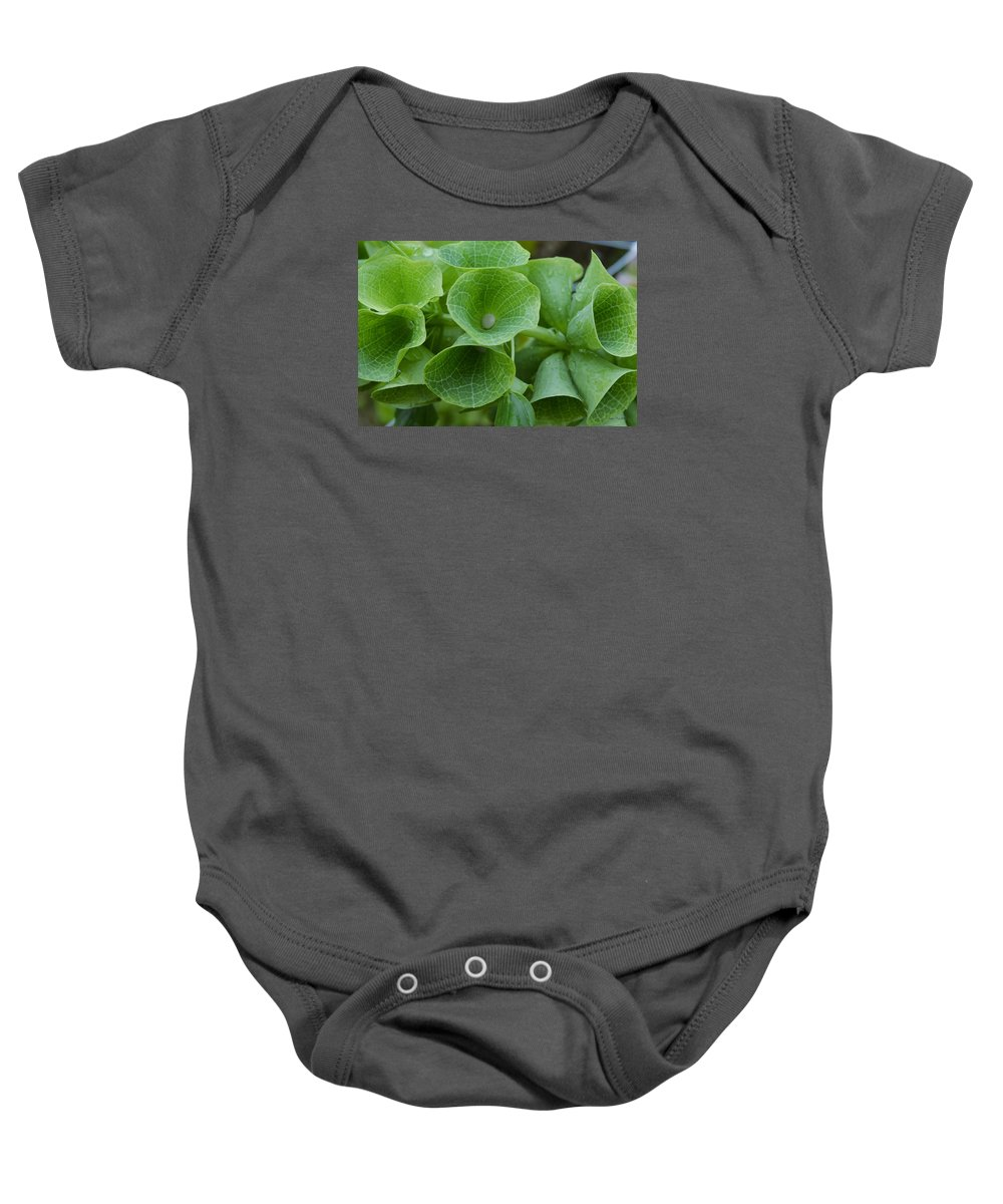 Green Baby Onesie featuring the photograph Green Bells by Felicia Tica