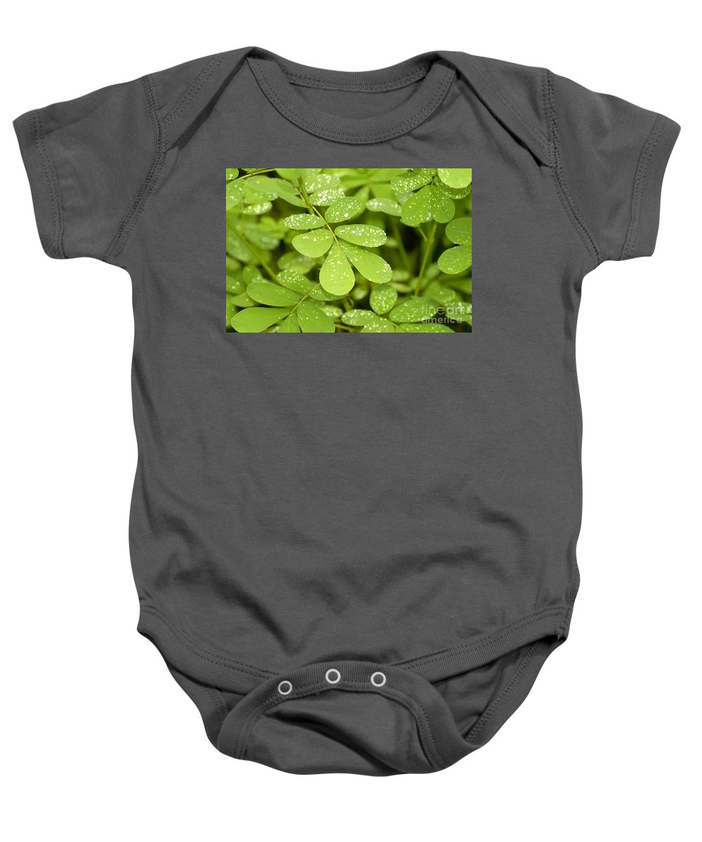 Green Baby Onesie featuring the photograph Green by David Lee Thompson