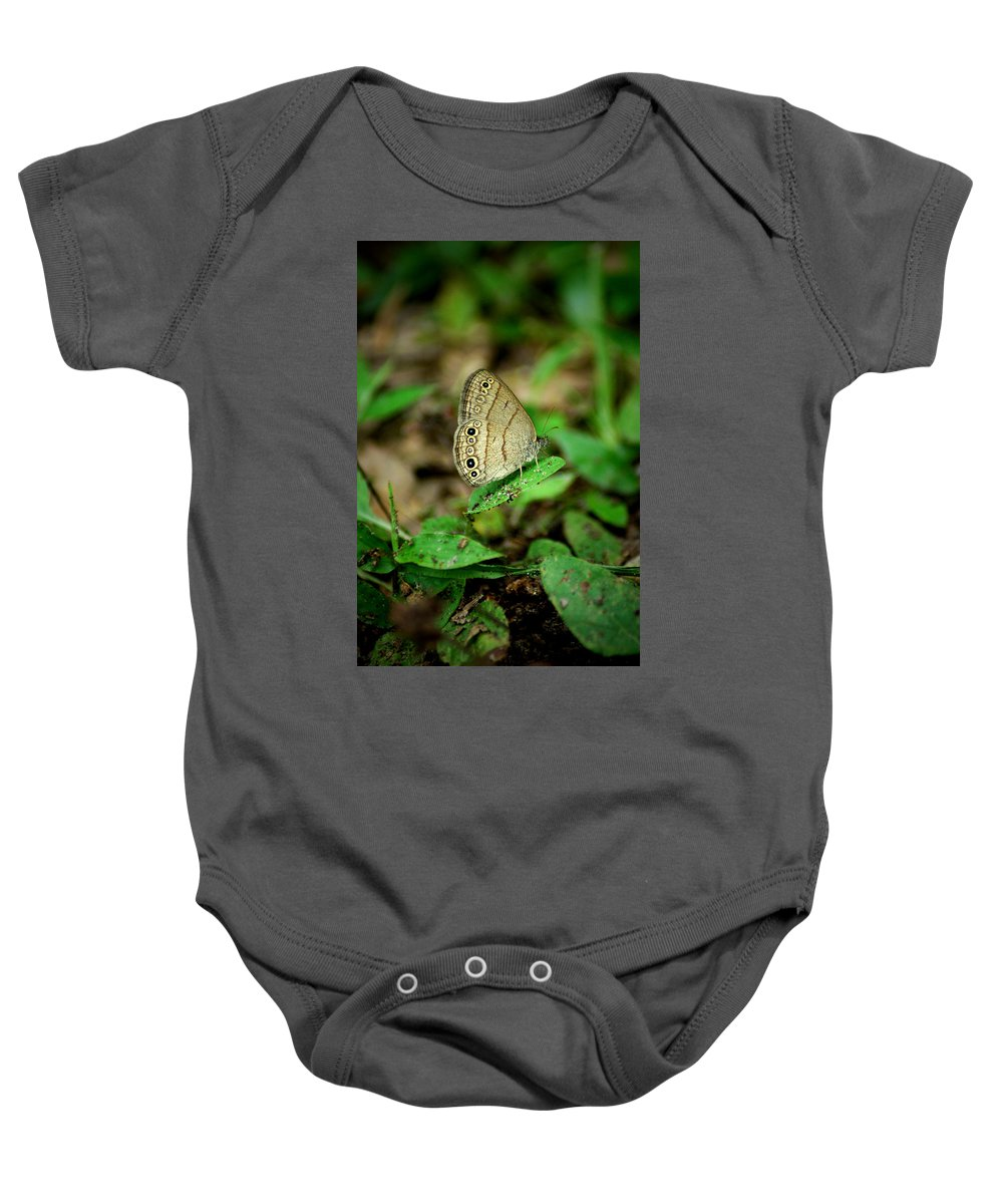 Butterfly Baby Onesie featuring the photograph Green by David Weeks