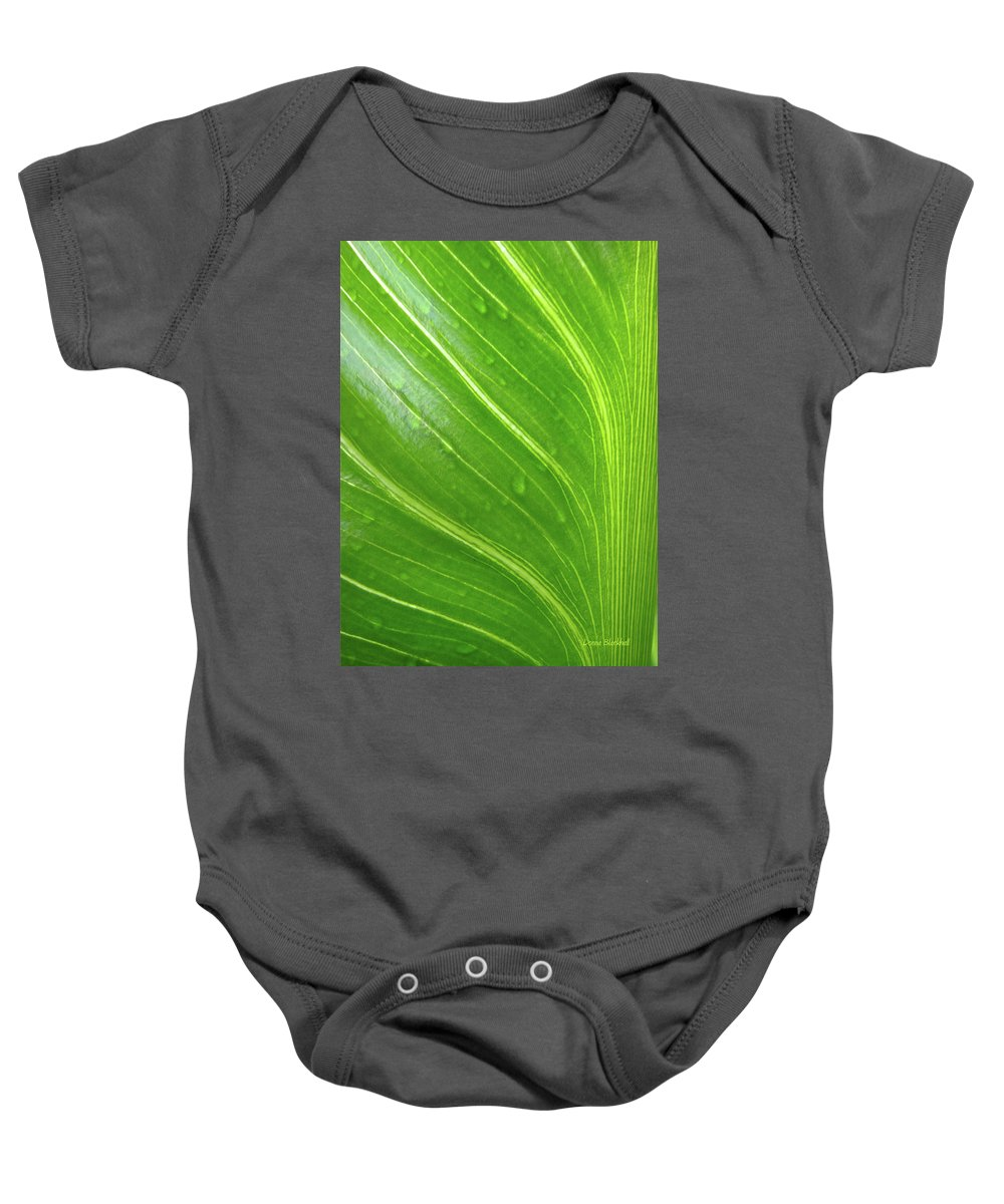 Green Baby Onesie featuring the photograph Green Living by Donna Blackhall