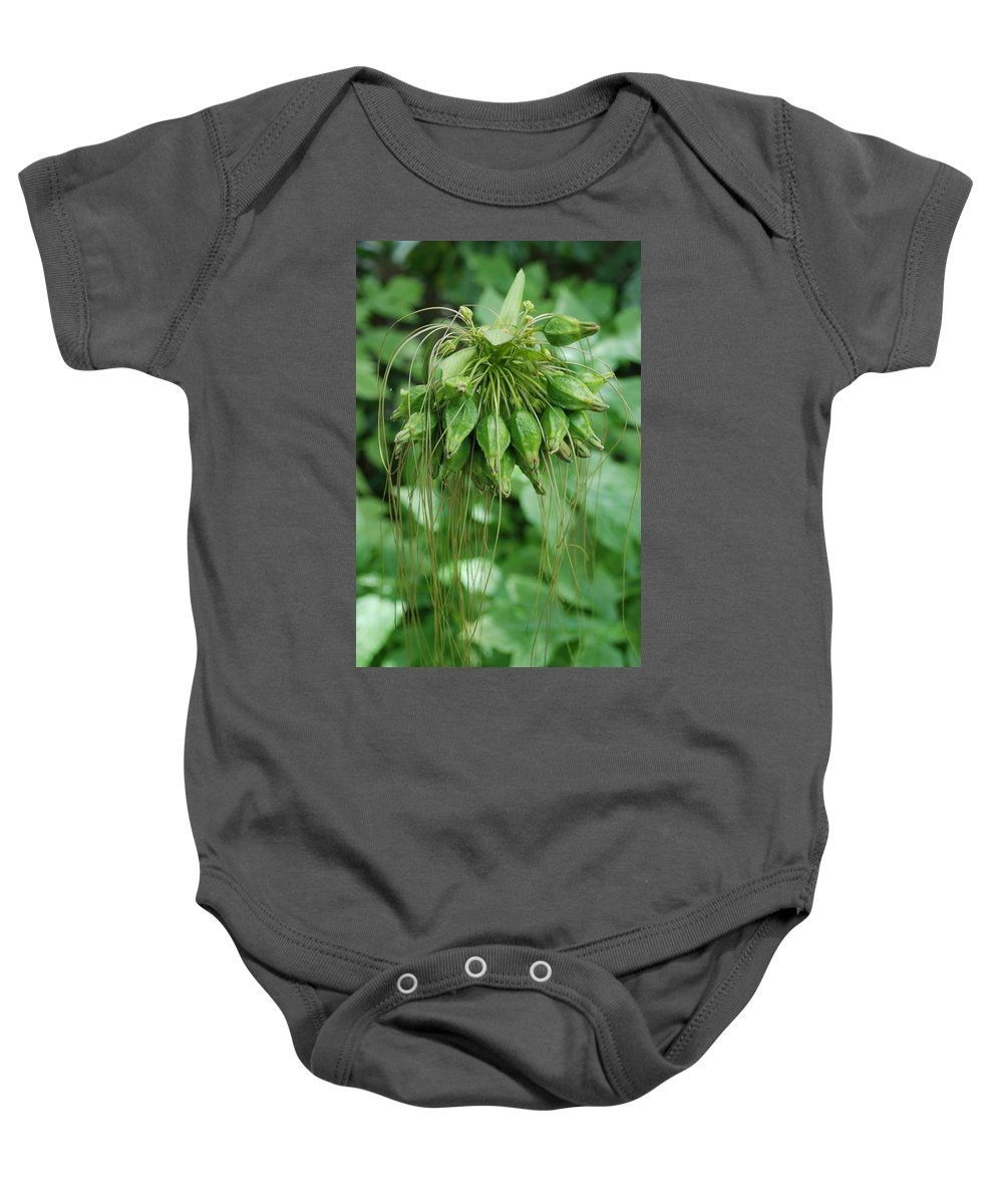 Macro Baby Onesie featuring the photograph Green Vines by Rob Hans