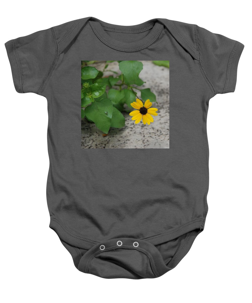Macro Baby Onesie featuring the photograph Grounded Sunflower by Rob Hans