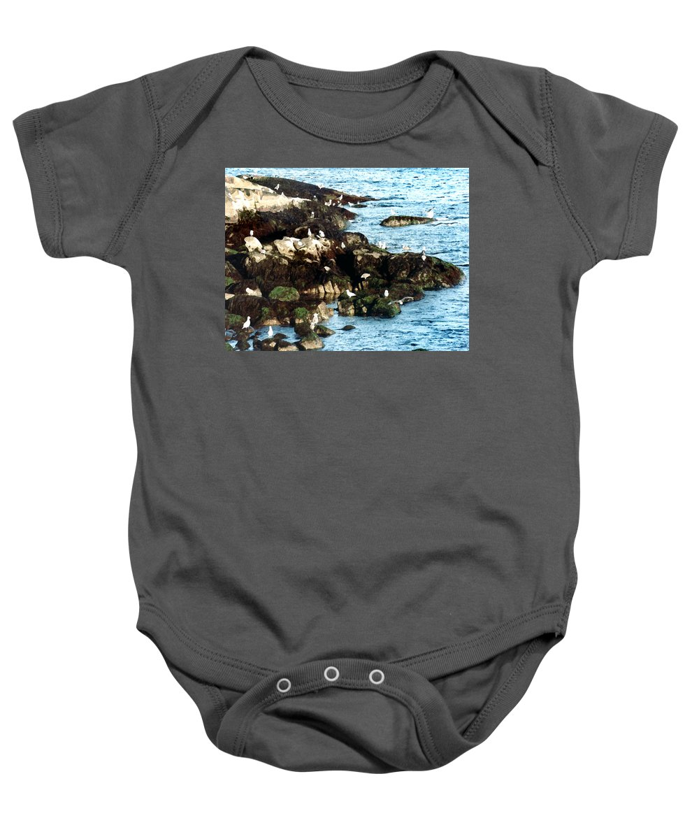 Seagulls Baby Onesie featuring the painting Gulls On Rocks by Paul Sachtleben