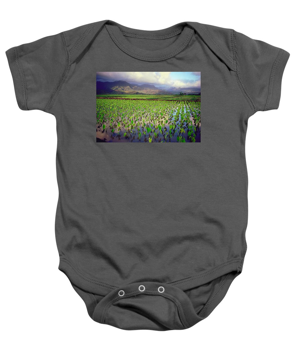 Kauai Baby Onesie featuring the photograph Hanalei Valley Taro Ponds by Kevin Smith