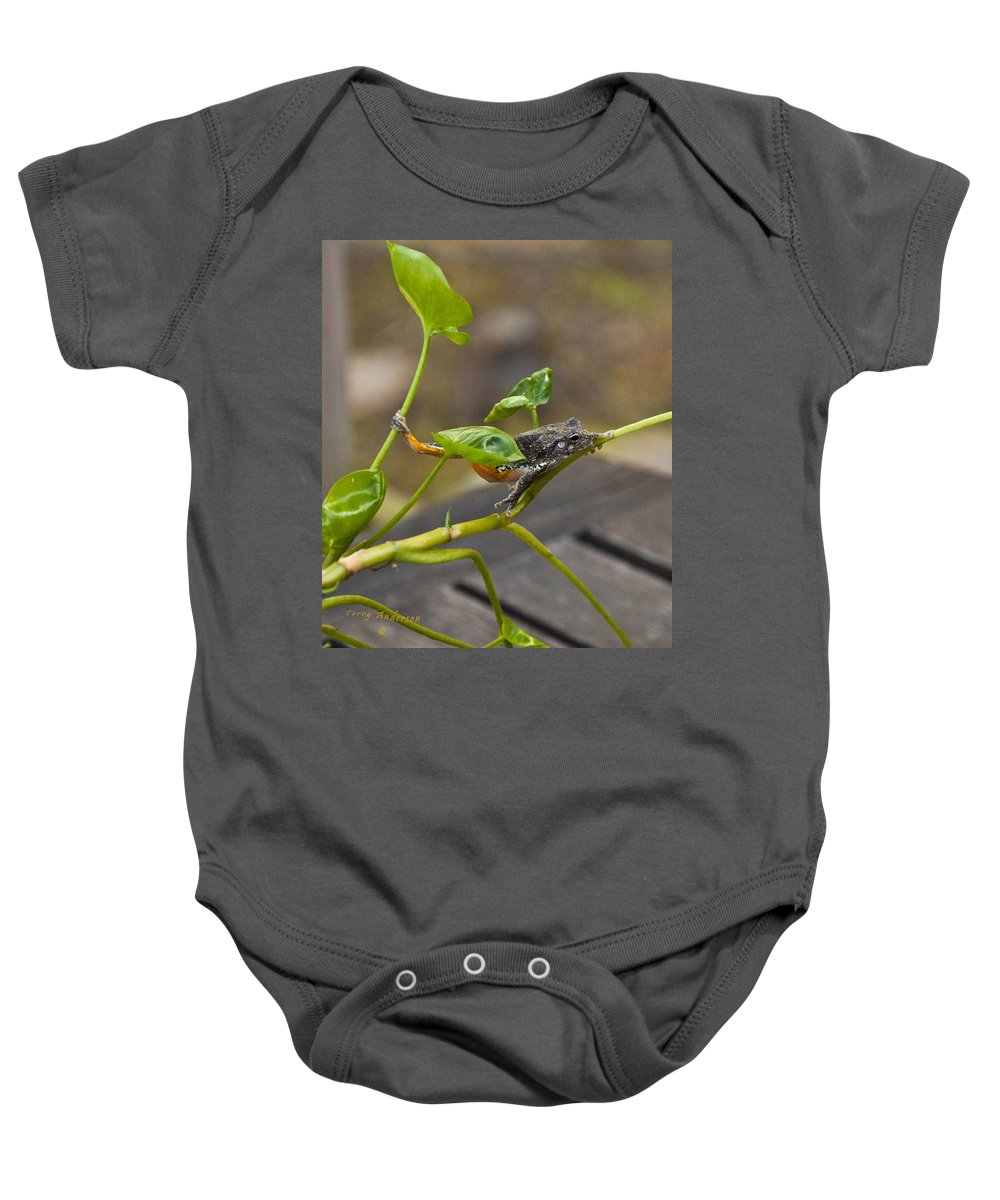 Hangin' Out Baby Onesie featuring the photograph Hangin' Out by Terry Anderson