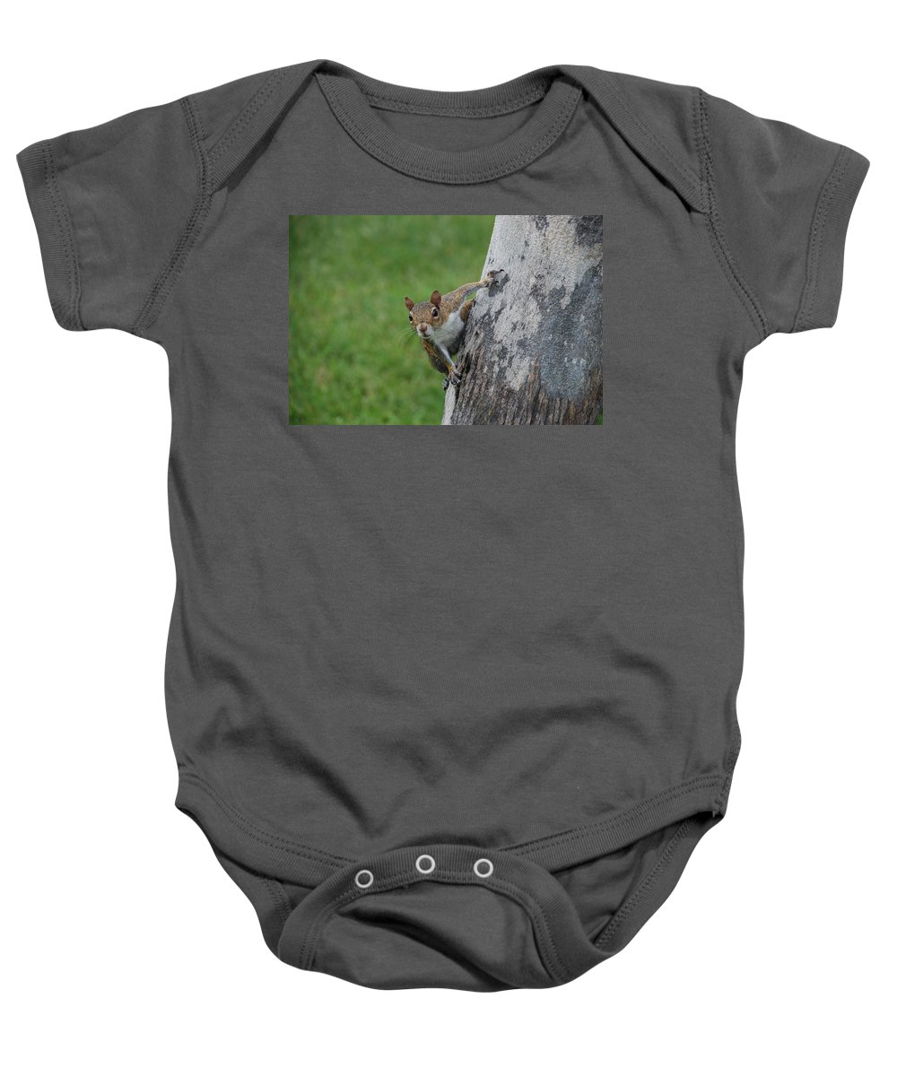 Squirrel Baby Onesie featuring the photograph Hanging On by Rob Hans