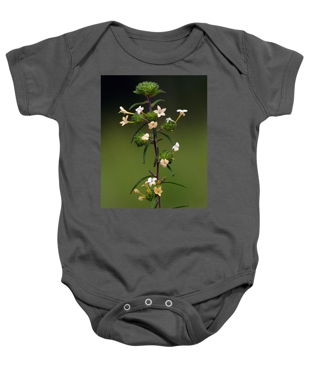 Nature Baby Onesie featuring the photograph Happy Flowers by Ben Upham III