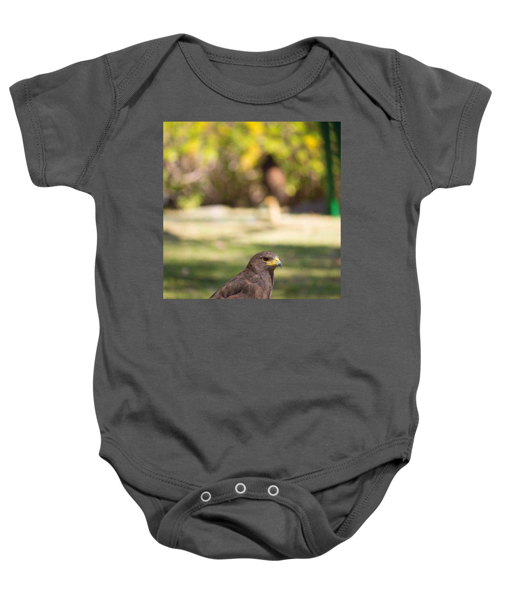 Animals Baby Onesie featuring the photograph Harris Hawk Looking At Infinity by Seb Estrada