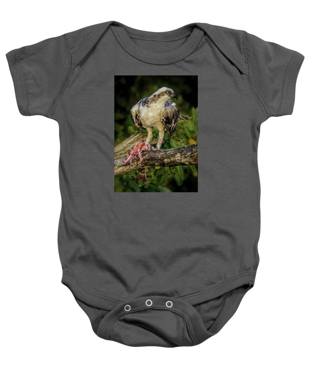 Ospray Baby Onesie featuring the photograph Having Dinner At Sunset by Francisco Gomez