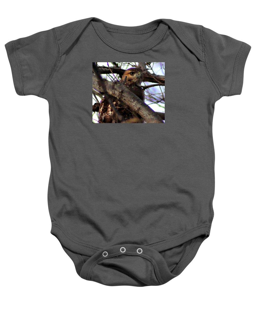 Hawkeye Baby Onesie featuring the photograph Hawkeye II by Darin Bokeno