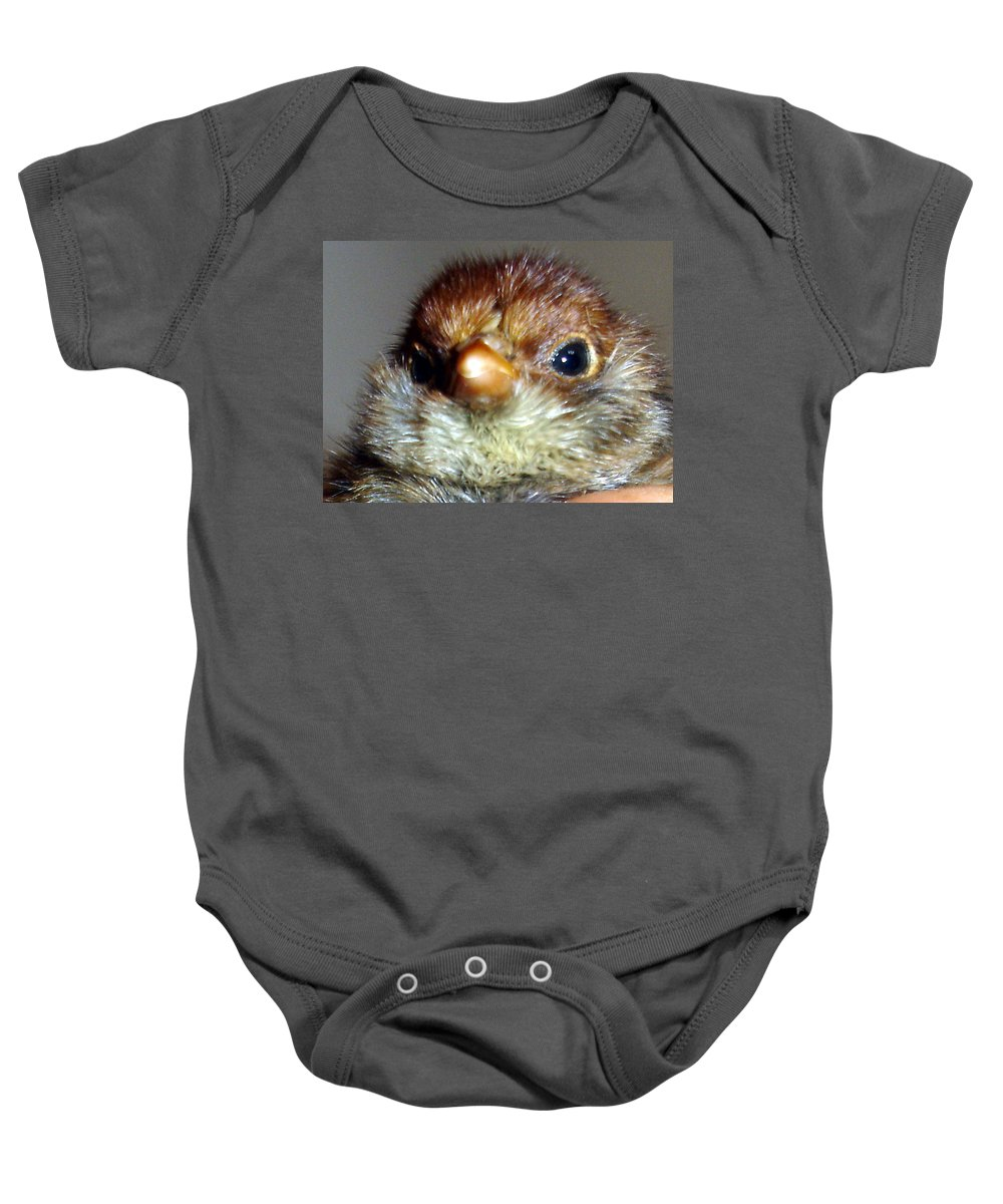 Chick Baby Onesie featuring the photograph Hello Chick by Susan Baker