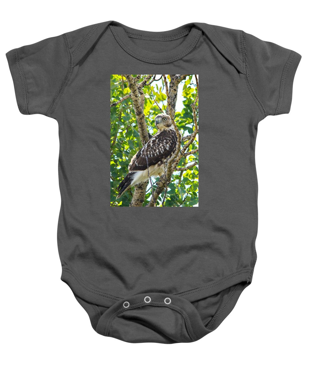 Nature Baby Onesie featuring the photograph Here's My Good Side by Crystal Massop