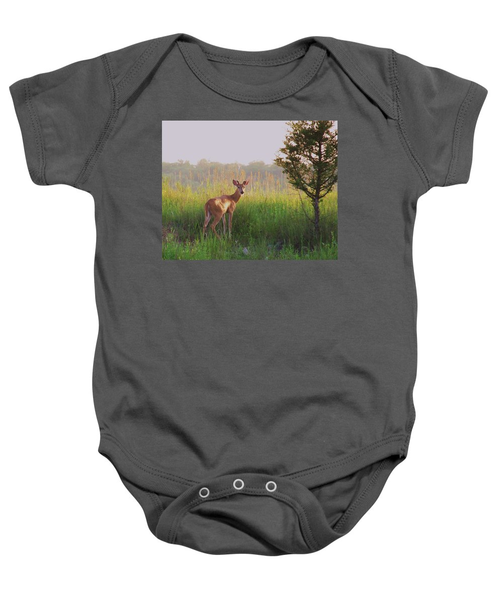 Deer Photograph Baby Onesie featuring the photograph Hesitation by Marilyn Smith