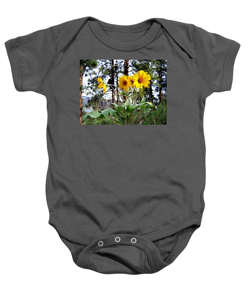 Sunflowers Baby Onesie featuring the photograph High In The Hills by Will Borden
