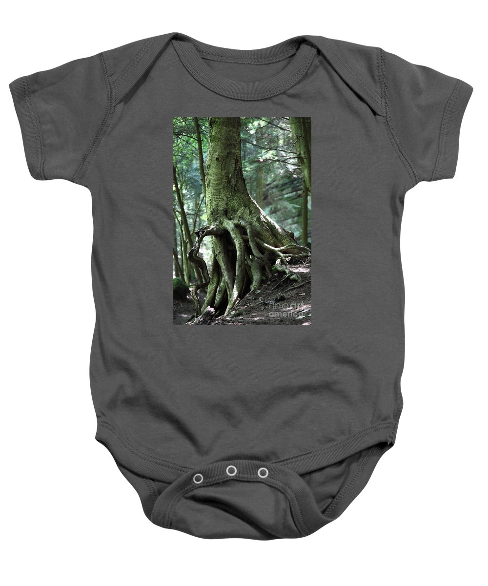 Trees Baby Onesie featuring the photograph Hold On To Me. by Amanda Barcon