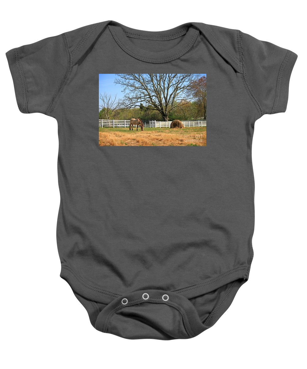 Landscape Baby Onesie featuring the photograph Horse And Hay by Todd Blanchard