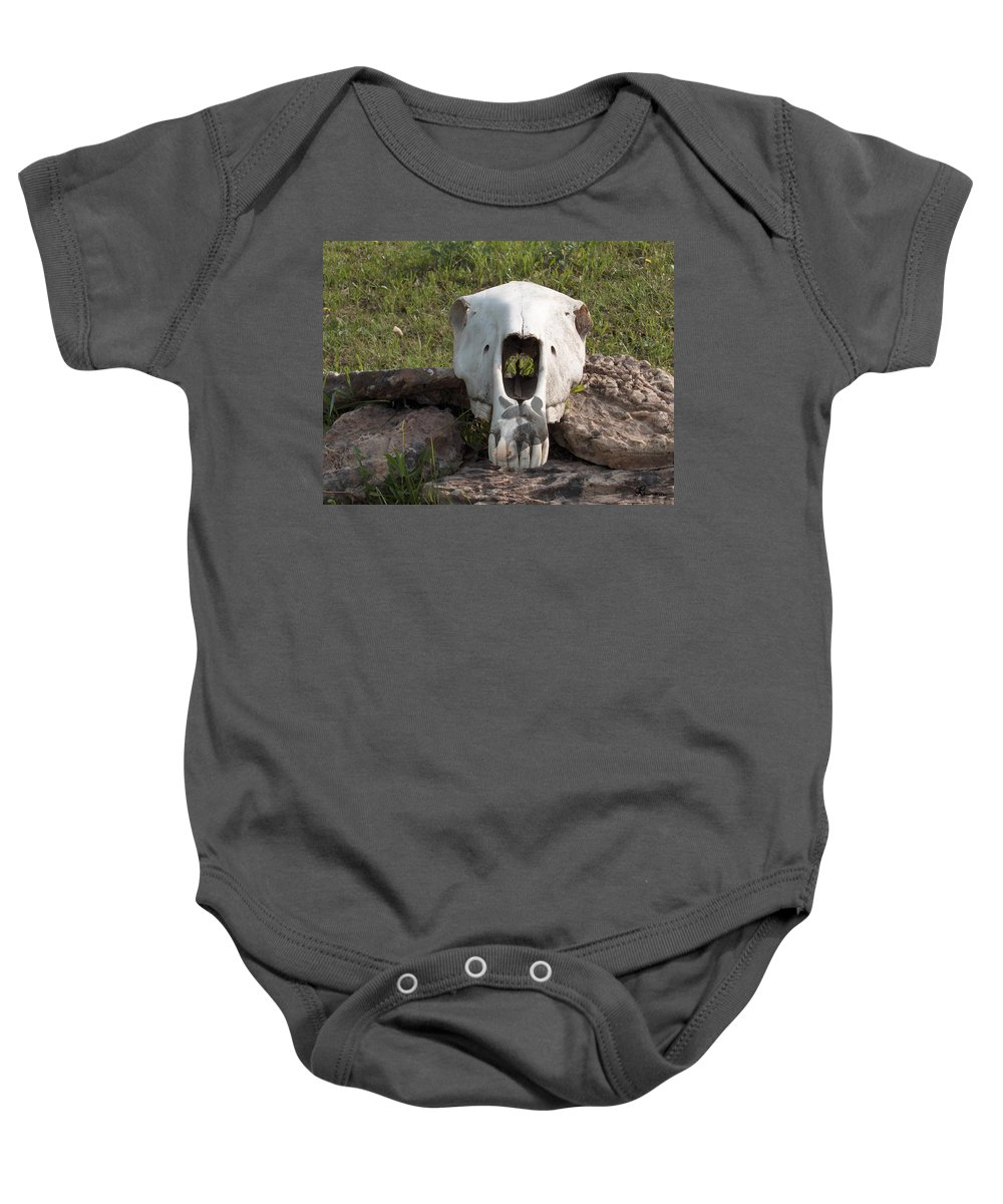 Horse Skull Spirit Friends Alone Rocks Horses Animals Ranch Herd Baby Onesie featuring the photograph Horse Spirits 2 by Andrea Lawrence