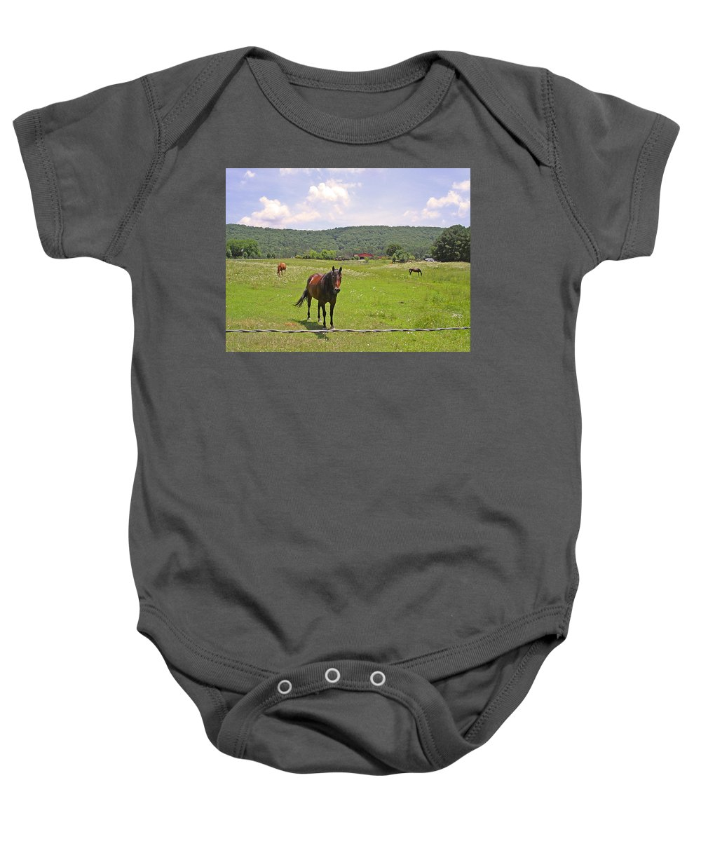 Horse Baby Onesie featuring the photograph Horses In The Pasture by Anne Cameron Cutri