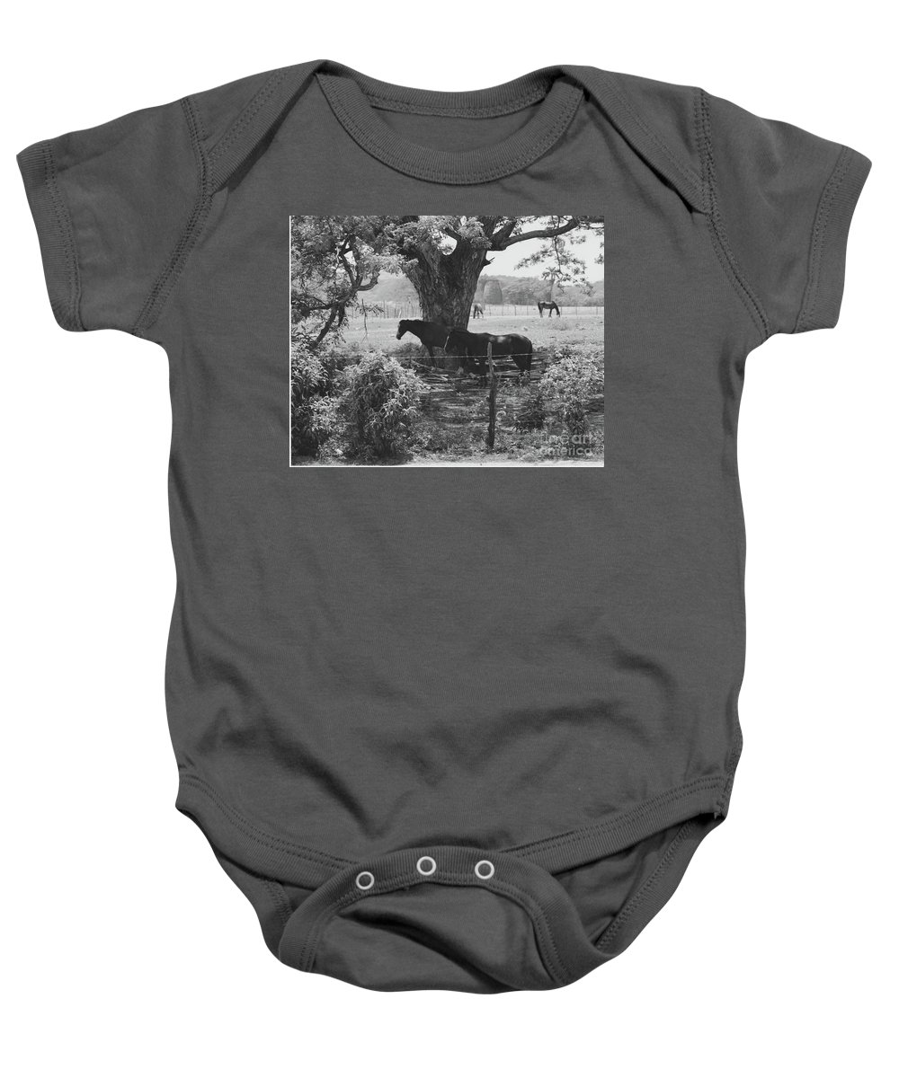 Horses Baby Onesie featuring the photograph Horses In The Pasture by Michelle Powell