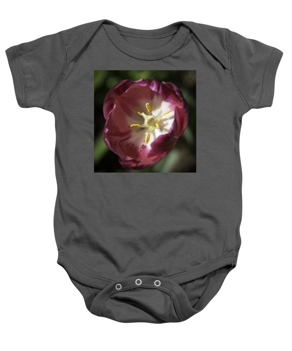 Flowers Baby Onesie featuring the photograph Hot Pink Tulip Center Squared by Teresa Mucha