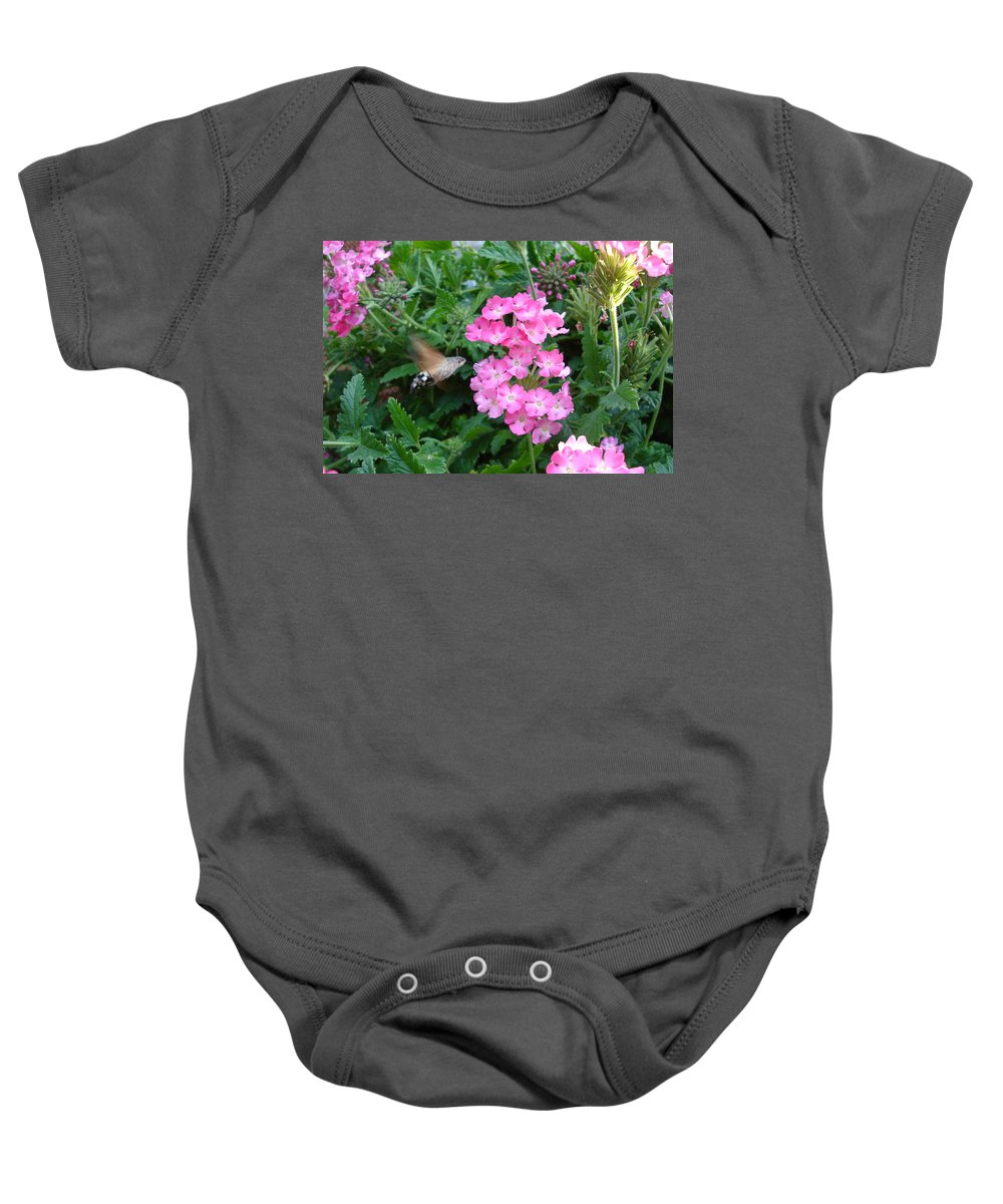 Flower Baby Onesie featuring the photograph Hummingbird Moth On Pink Verbena by Susan Baker