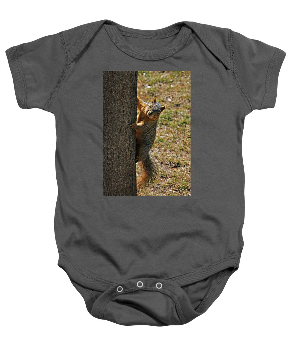 Squirrel Baby Onesie featuring the photograph I See You by Marilyn Hunt