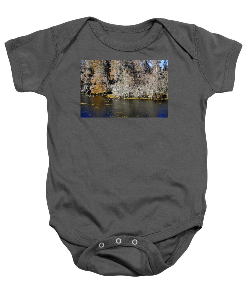 White Ibis Baby Onesie featuring the photograph Ibis In Flight by David Lee Thompson