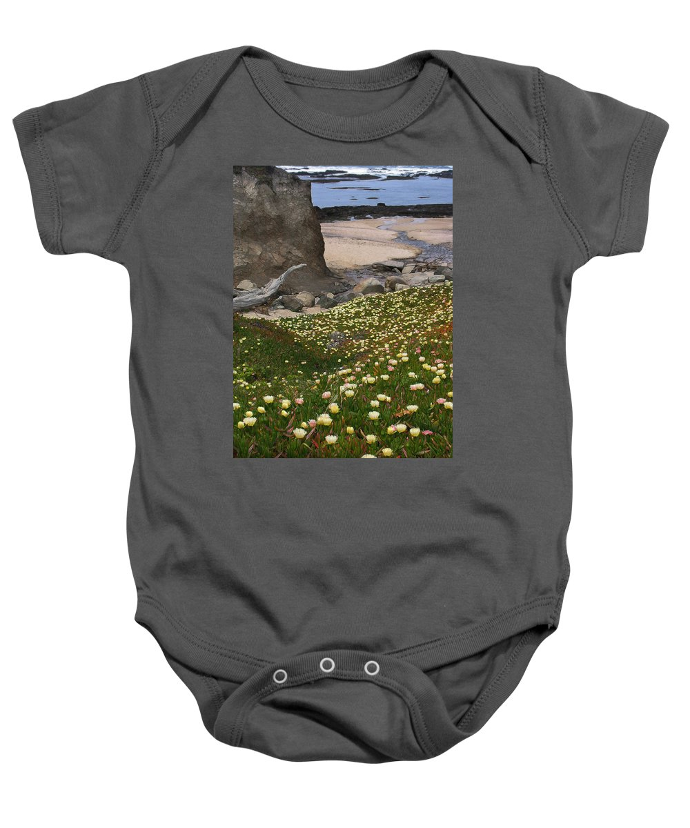 Landscape Baby Onesie featuring the photograph Ice Plants On Moss Beach by Karen W Meyer