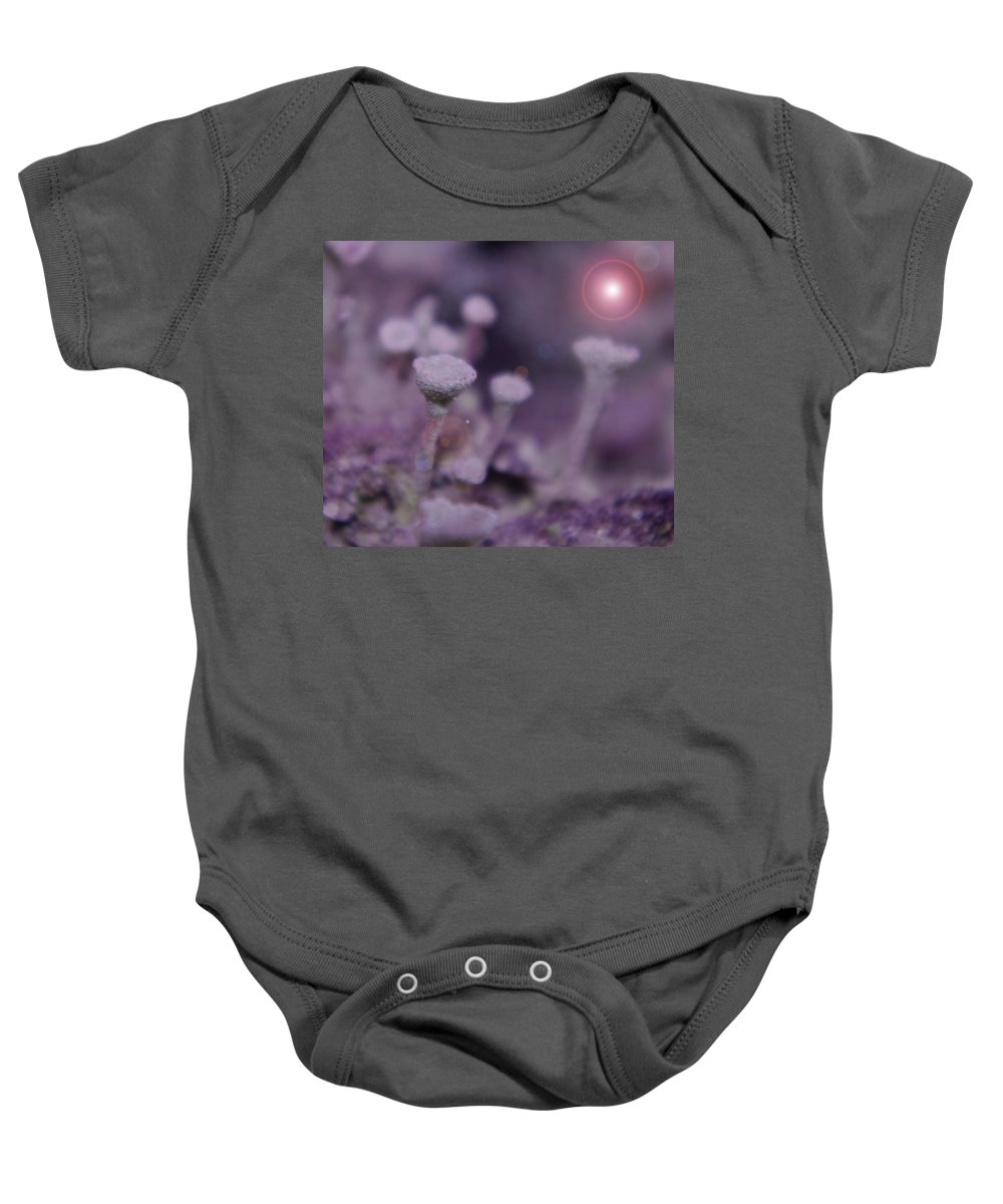 Mushrooms Baby Onesie featuring the photograph In Mushroom Land by Jeff Swan