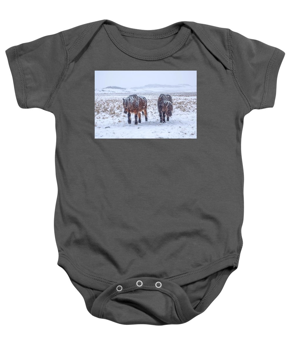 Horse Baby Onesie featuring the photograph In The Storm by Tom and Pat Cory
