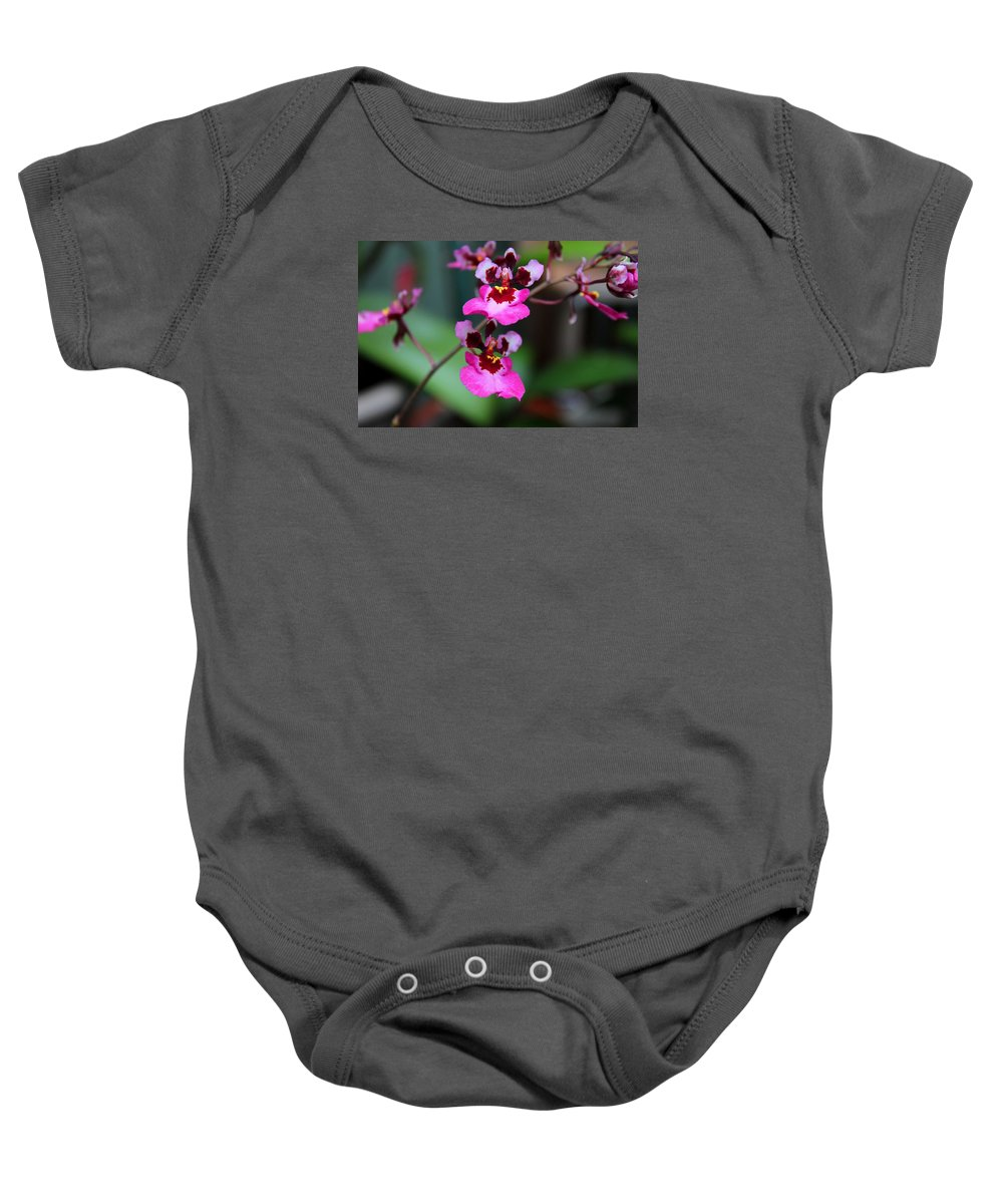 Orchid Baby Onesie featuring the photograph Inescapable Desire by Michiale Schneider