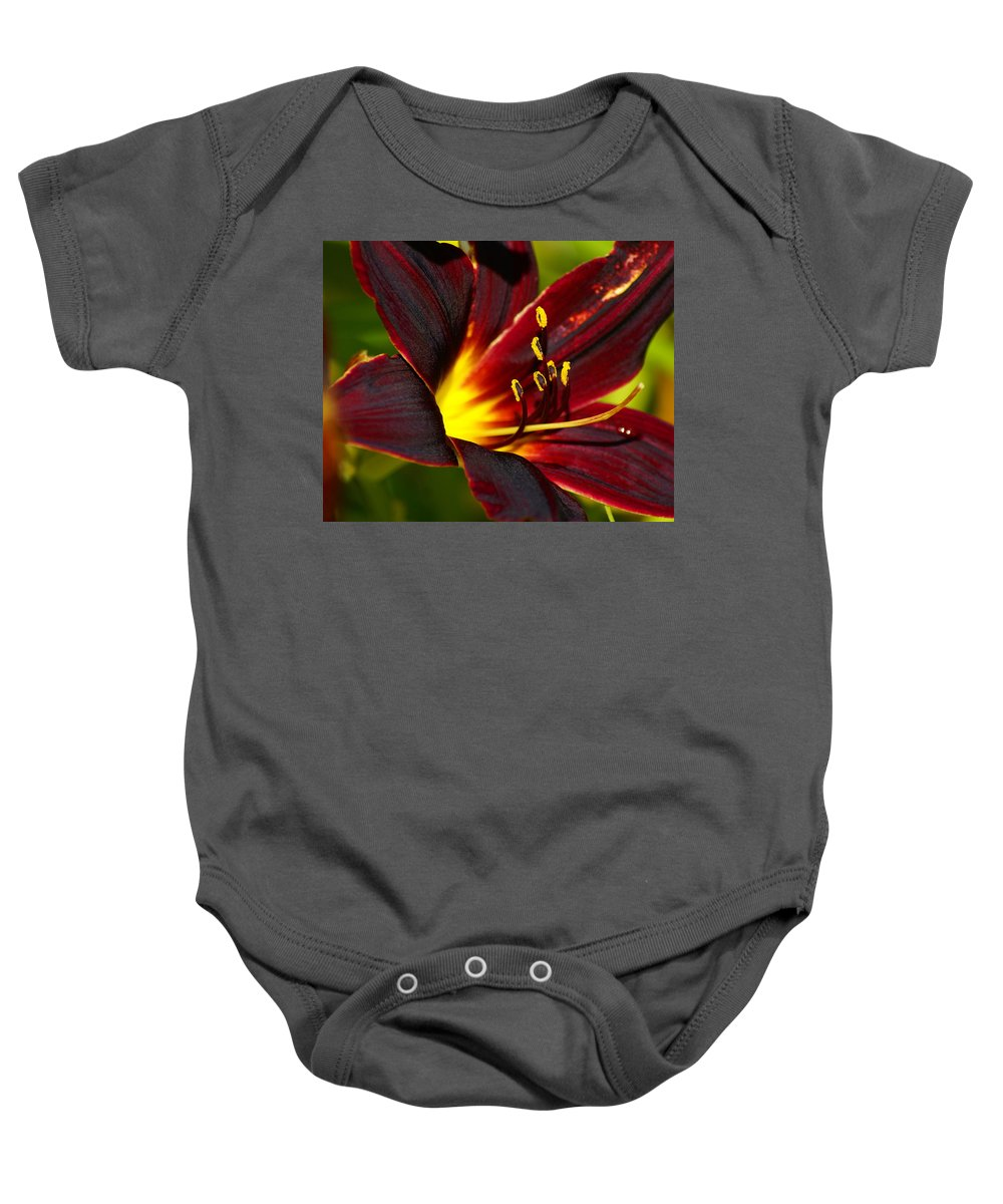 Flowers Baby Onesie featuring the photograph Inner Glow by Ben Upham III