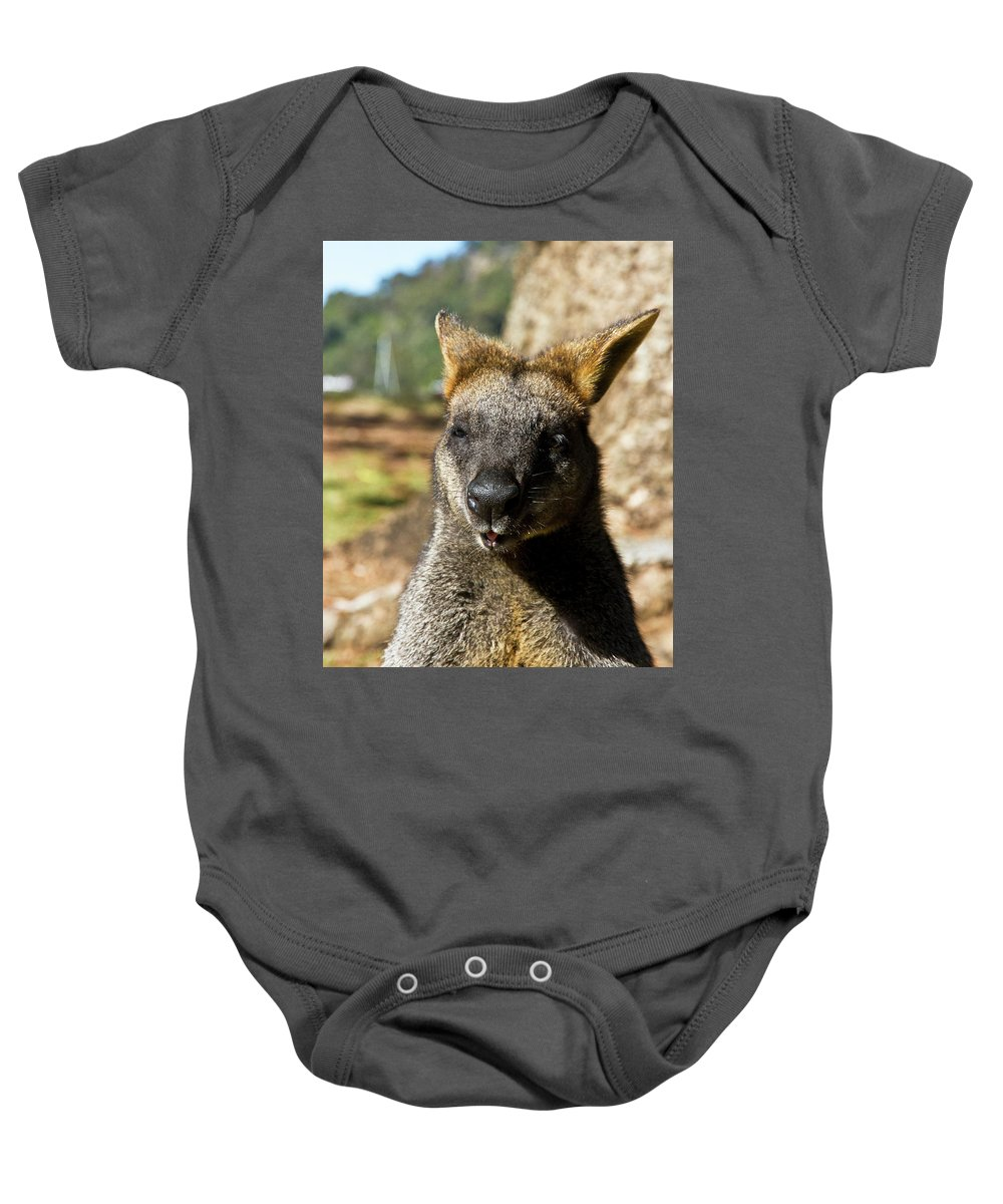 Swamp. Wallaby. Close Up Baby Onesie featuring the photograph Interview With A Swamp Wallaby by Miroslava Jurcik