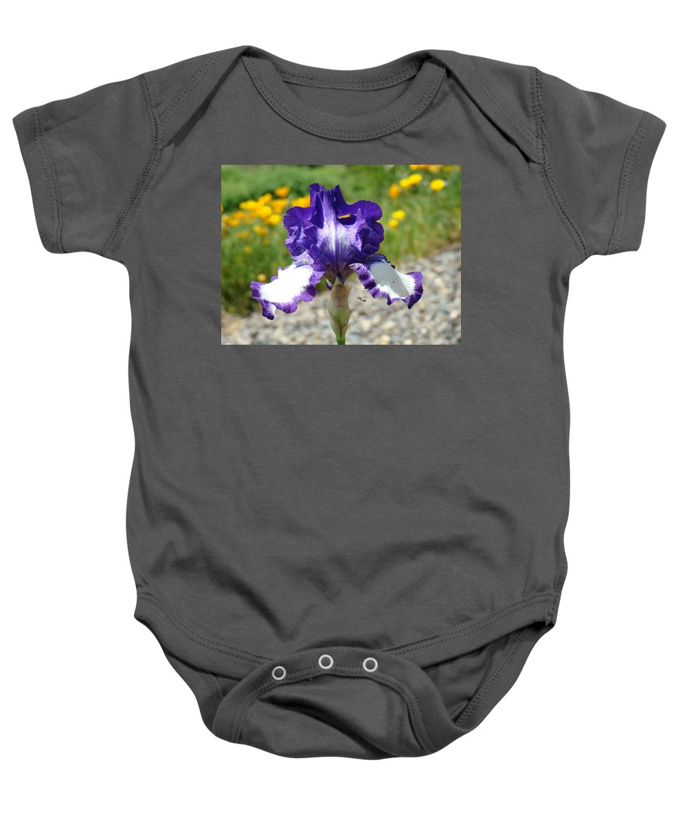 �irises Artwork� Baby Onesie featuring the photograph Iris Flower Purple White Irises Nature Landscape Giclee Art Prints Baslee Troutman by Baslee Troutman