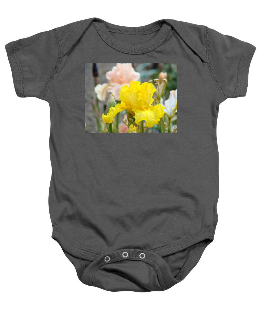 �irises Artwork� Baby Onesie featuring the photograph Irises Botanical Garden Yellow Iris Flowers Giclee Art Prints Baslee Troutman by Baslee Troutman