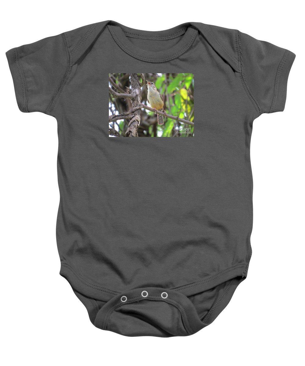 Carolina Wren Baby Onesie featuring the photograph I've Got A Song by Charles Green