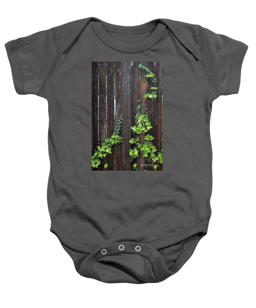 Clay Baby Onesie featuring the photograph Ivy On Fence by Clayton Bruster