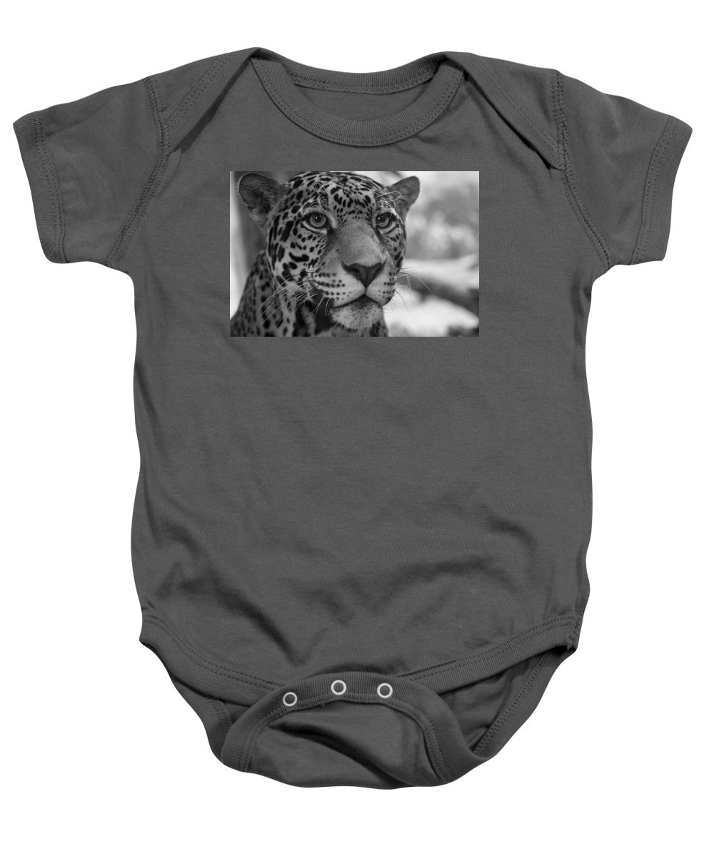 Jaguar Baby Onesie featuring the photograph Jaguar In Black And White by Sandy Keeton