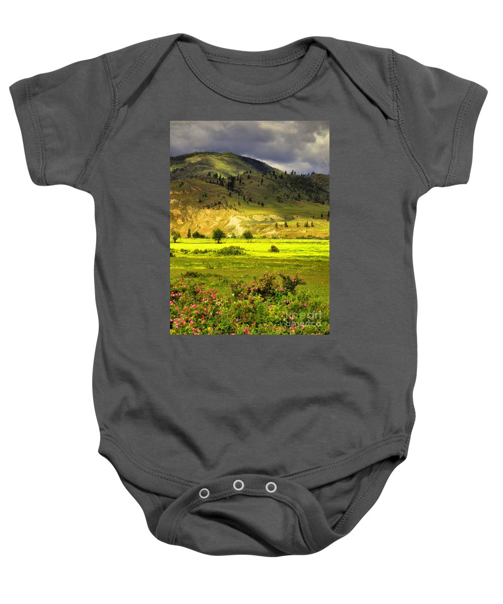 Trees Baby Onesie featuring the photograph June 7 2010 by Tara Turner