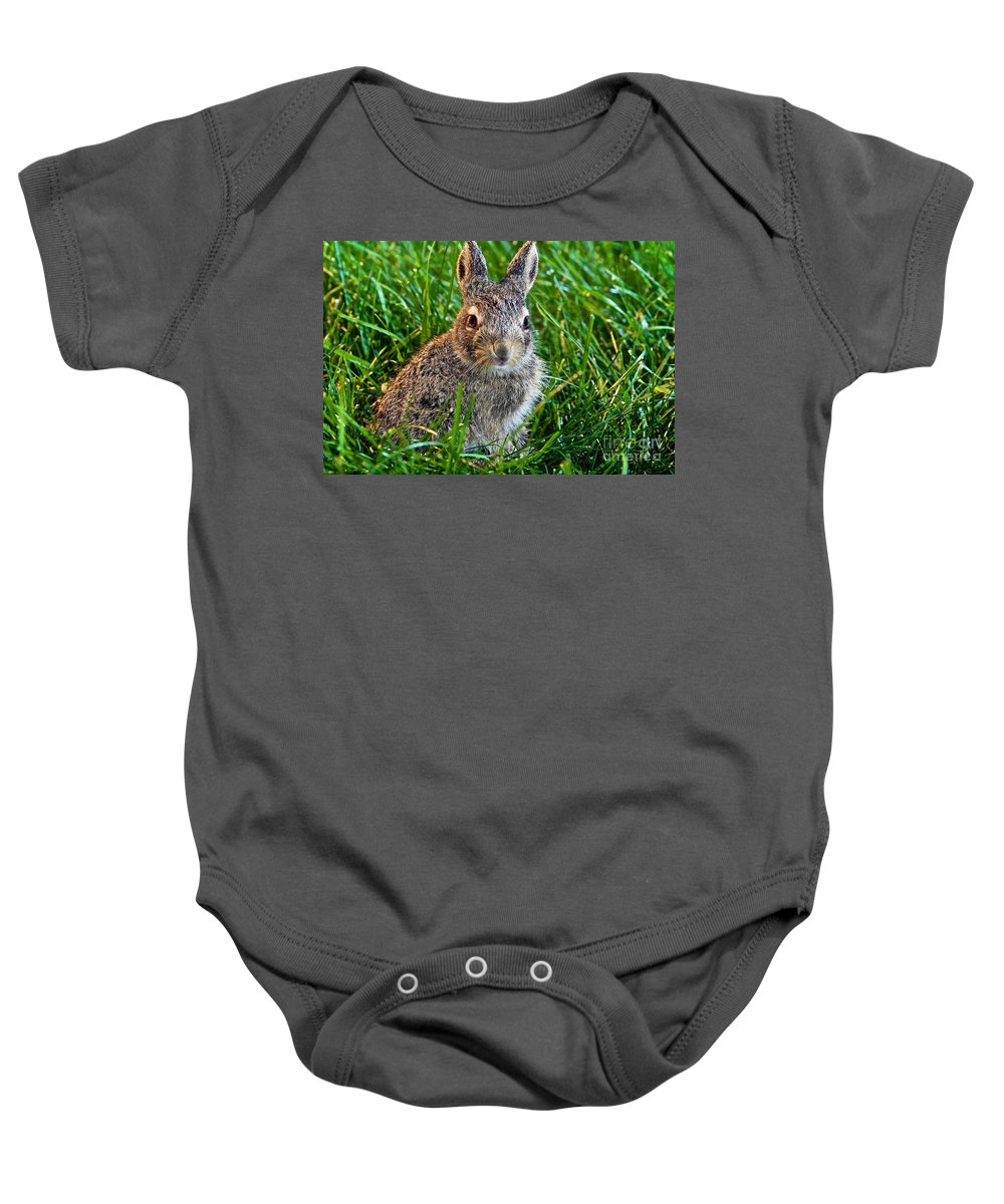 Baby Rabbit Baby Onesie featuring the photograph Just Beginning by DJ MacIsaac