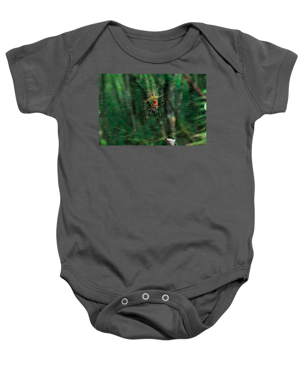 Spider Baby Onesie featuring the photograph Just Hangin' Around by Christopher L Thomley