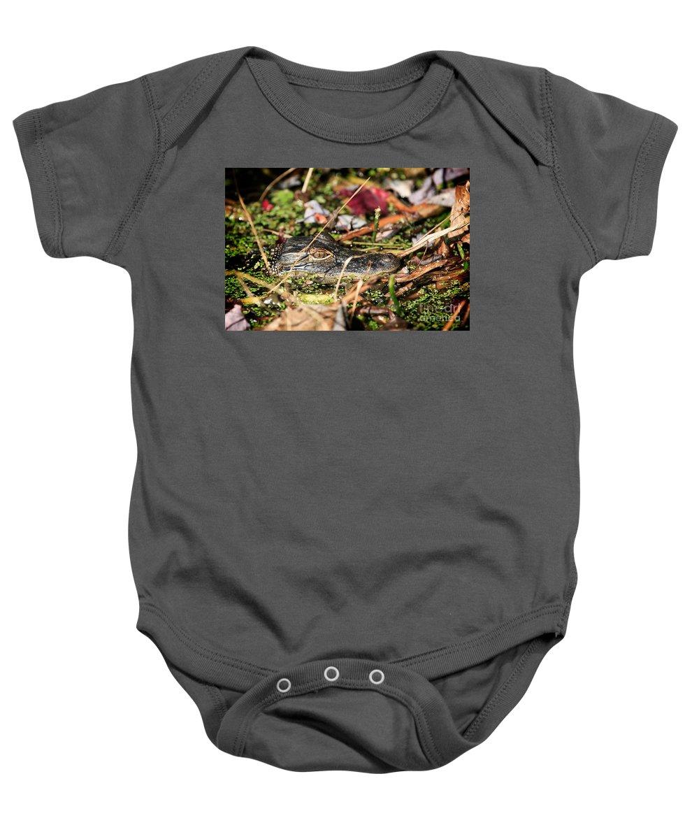 Juvenile Baby Onesie featuring the photograph Juvenile American Alligator by Matt Suess