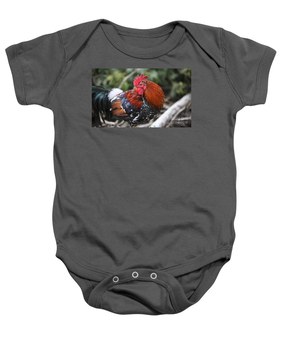 Rooster Baby Onesie featuring the photograph Kauai Rooster by Nadine Rippelmeyer