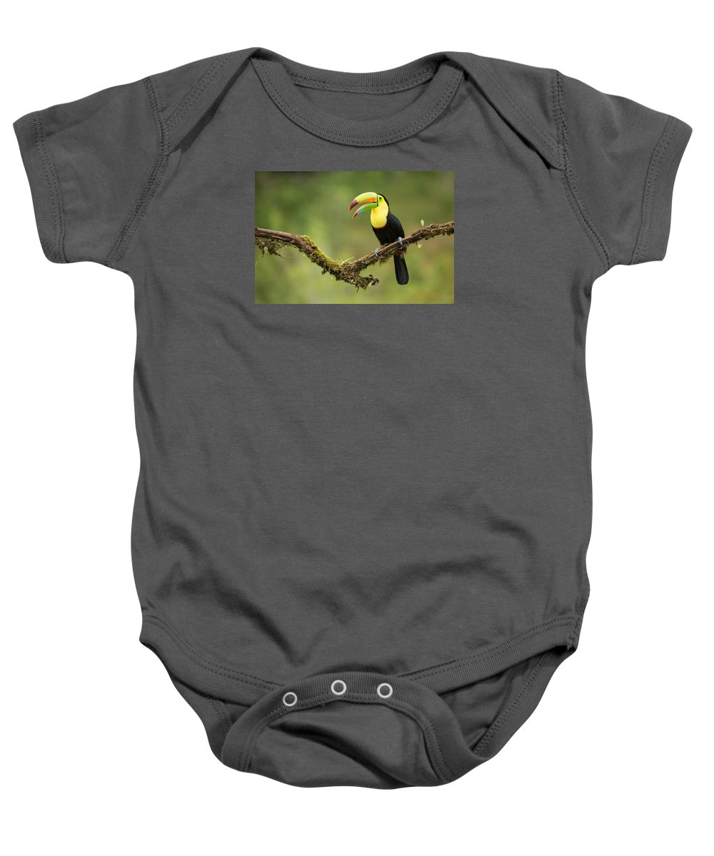 Birding Baby Onesie featuring the photograph Keel Billed Toucan Perched On A Branch In The Rain Forest by Chris Jimenez