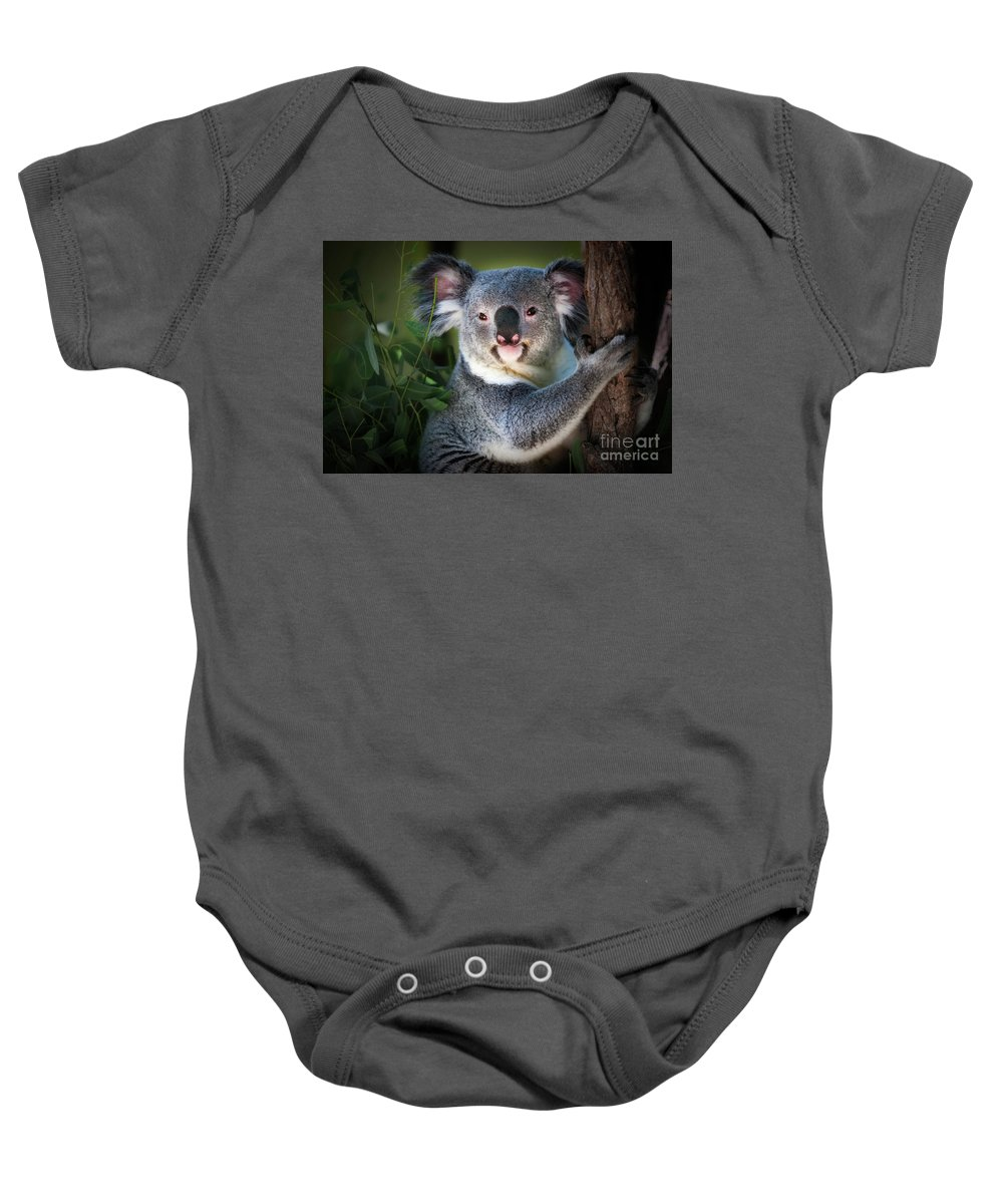 Koala Bear Baby Onesie featuring the photograph Koala by Doug Sturgess