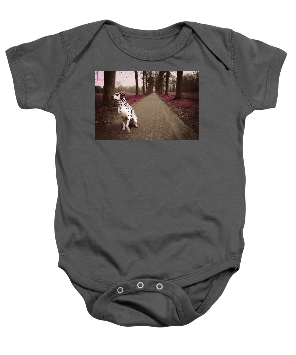 Dalmatian Baby Onesie featuring the photograph Kokkie On The Autumn Alley Of Rhoon by Jenny Rainbow