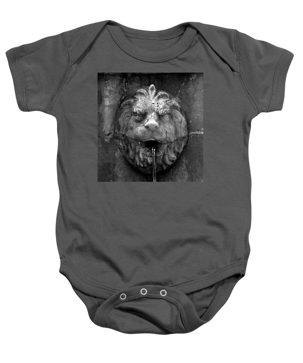 Lion Baby Onesie featuring the photograph Koreshans Lion by David Lee Thompson