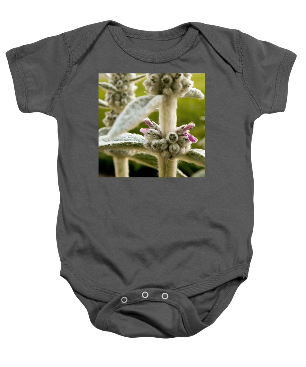 Flower Baby Onesie featuring the photograph Lamb's Ear by Trish Tritz