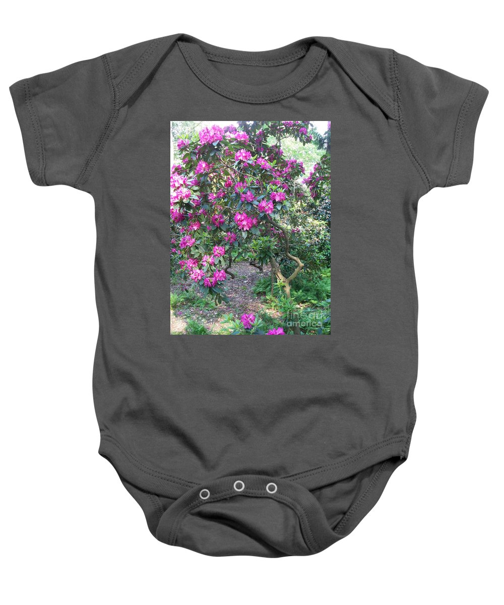 Purple Baby Onesie featuring the photograph Laurel Mountain Tree by Eric Schiabor