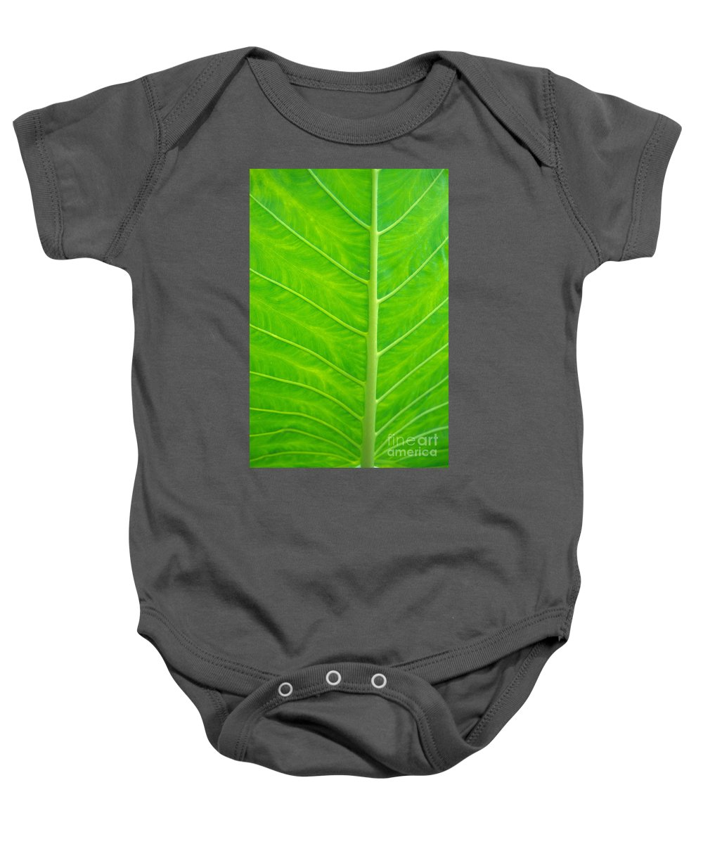 Afternoon Baby Onesie featuring the photograph Leaf Detail by Kyle Rothenborg - Printscapes